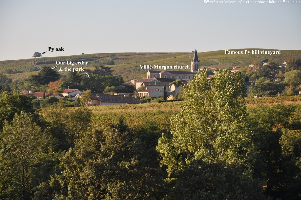 Character-beaujolais-cottage-self-catering-accomodation-Baviere-et-volcan (102)