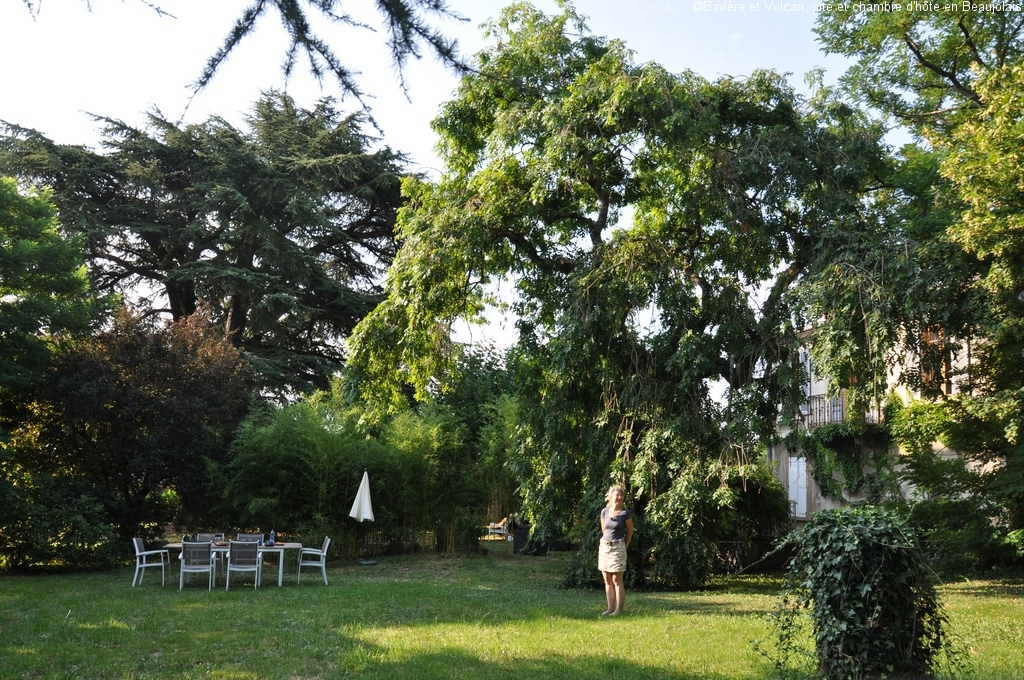 Bavière-et-volcan-en-Beaujolais-gîte-de-caractère-chambre-hôtes-charme-Maison-de-vacances 11