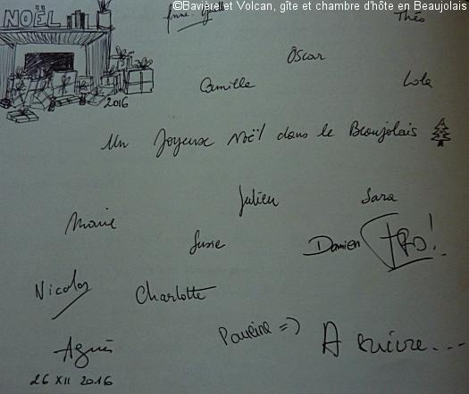 Avis-Bavière-et-volcan-en-Beaujolais-gîte-de-caractère-chambre-hôtes-charme (233)